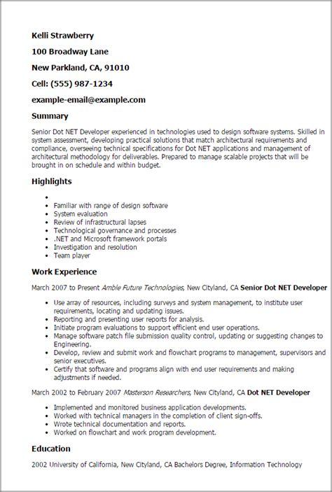 professional senior dot net developer templates