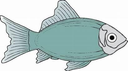 Fish Dead Cartoon Clipart Tank Clipartix