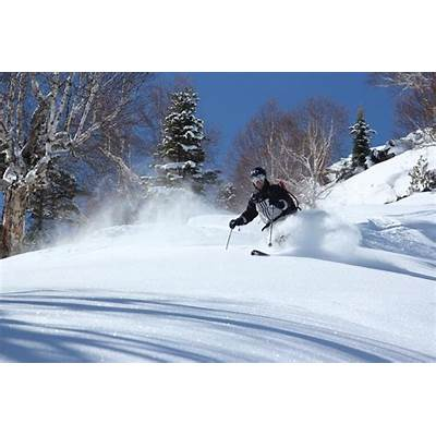 Skiing in Gulmarg and ManaliMountain Adventures Guide's