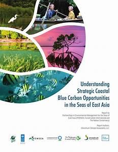Understanding Strategic Coastal Blue Carbon Opportunities