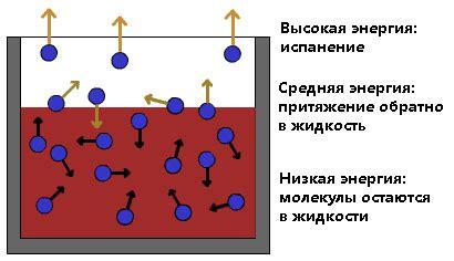 Удельная теплота парообразования — физика тепловые явления — фоксфорд.учебник