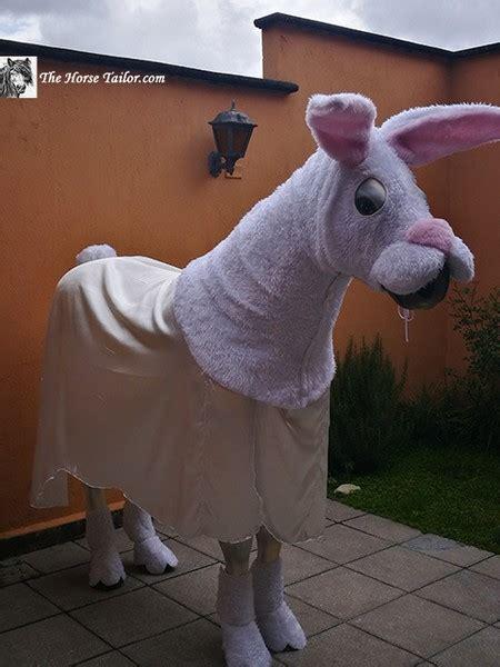 rabbit costume  horse tailor