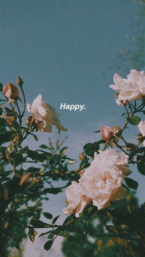 pin by gabbie on flowers aesthetic iphone wallpaper