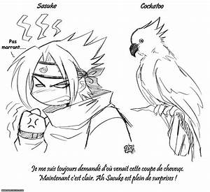 Coiffure Manga Garçon : sasuke et les oiseaux fma naruto manga allmyblog ~ Medecine-chirurgie-esthetiques.com Avis de Voitures