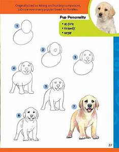 Learn To Draw Dogs  U0026 Puppies  Step