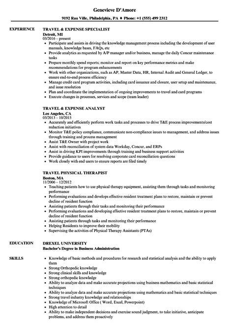 travel resume sles velvet