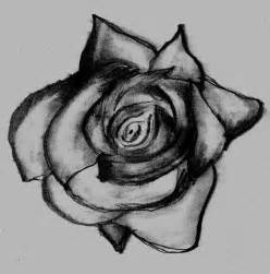 Rose Drawing Tumblr
