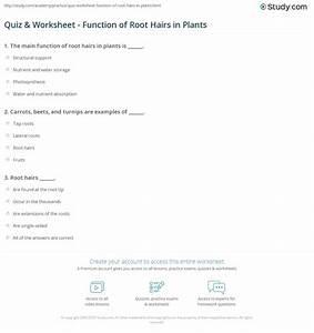 35 Student Worksheet For Microslide Lesson Set 59