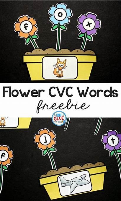Cvc Word Building Flowers Words Freebie Activities