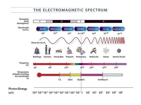 science speaks out about electromagnetic frequencies harms