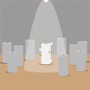 Rauhfaser Auf Rauhfaser Tapezieren : raufaser tapezieren decke perfect selbst anbringen with raufaser tapezieren decke great ~ Heinz-duthel.com Haus und Dekorationen