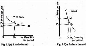 Elasticity Of Demand  Meaning And Types  With Calculations