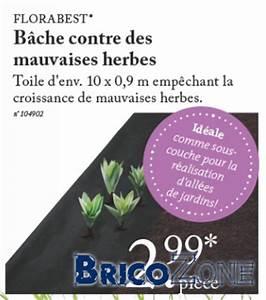 Comment Empecher L Herbe De Pousser Dans Le Gravier : comment viter le retour de la mauvaise herbe ~ Dailycaller-alerts.com Idées de Décoration