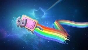 Descargar 2048x1152 Nyan Cat Meme fondo de pantalla