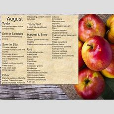 Monthly Allotment Calendar