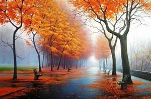 Pleasant inspiradora paisagem majestosa romântico colorido ...