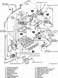 2003 Lexus Es300 Vacuum Diagram