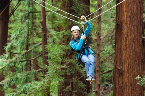 redwood canopy tours mount hermon 187 mount hermon adventures 187 adventures