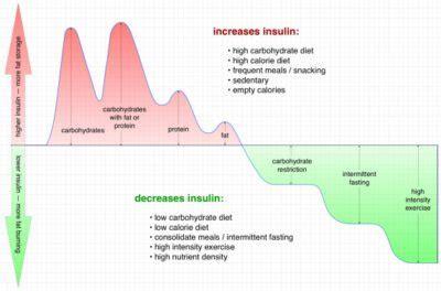 intermittent fasting diet doctor
