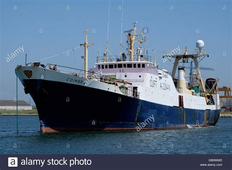 How To Fish For Cod From A Boat by Bacalhoeiro A Type Of Portuguese Fishing Boat Used To