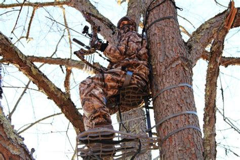 Most Useful Bow Hunting Tips For The Beginner Hunters
