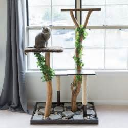 diy cat tree make a cat tree using real branches my amazing diy cat tree