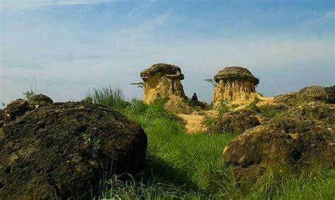 lokasi google map bukit jamur gresik