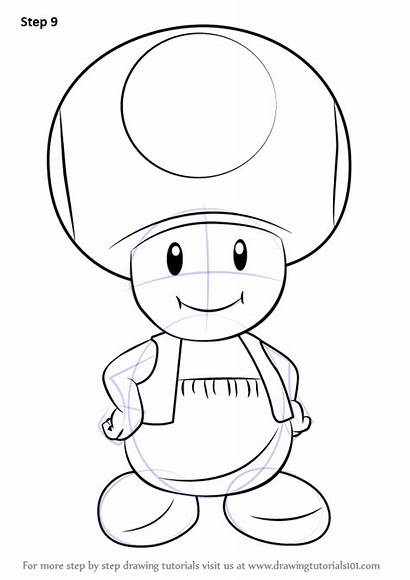Mario Toad Draw Super Step Drawing Drawings
