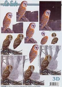 3d Owl Design Owl 3d Decoupage Sheet By Le Suh