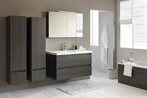 Meuble Salle De Bain Moderne : colonne salle de bain gris anthracite meuble salle de bain ~ Nature-et-papiers.com Idées de Décoration