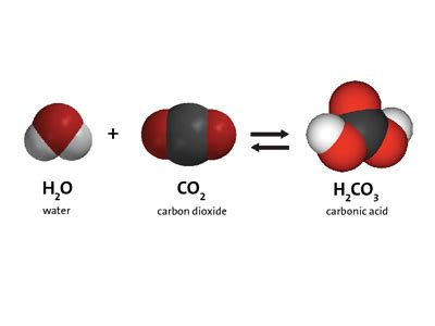 multimedia carbon dioxide can make a solution acidic