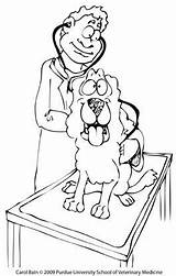 Coloring Pages Stethoscope Purdue Vet Edu Colouring sketch template