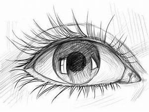 Zeichnungen Mit Bleistift Für Anfänger : die besten 25 zeichnen lernen f r anf nger ideen auf pinterest zeichnen anf nger zeichnen ~ Frokenaadalensverden.com Haus und Dekorationen