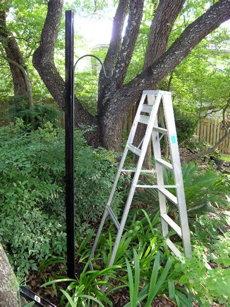 The Lazy Shady Gardener Leaning Shepherd Crook