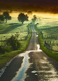 Landscape Pretty Country Road
