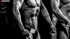 Clenbuterol Review  Cycle  Dosage  Results  And Side Effects