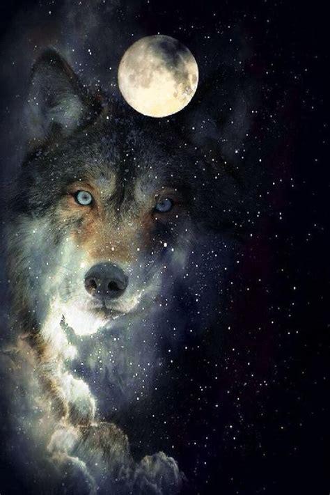 wolf moon beautiful wolf pictures wolf spirit fantasy wolf