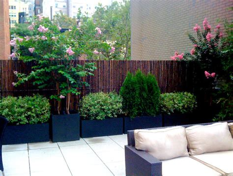 patio shrubs nyc roof garden bamboo fence terrace deck paver patio container plants sofa contemporary