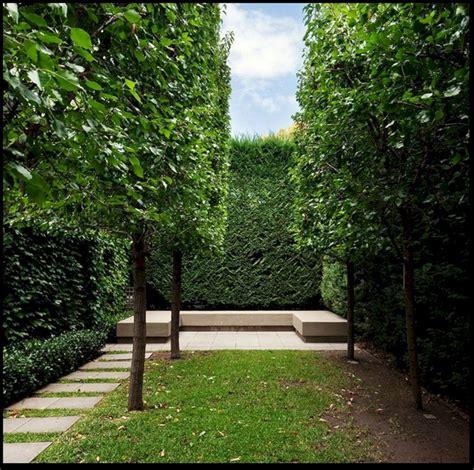 Garden Minimalist by Minimalist Garden Landscape Designs Minimalist Garden