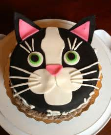 cat cake 25 best ideas about cat cakes on kitty cake