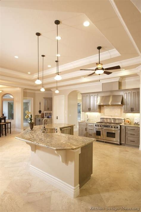 ideas for kitchen ceilings gray kitchen cabinets gray kitchens and kitchens on