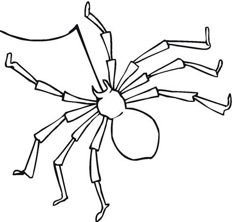 Free Printable Spider Coloring Pages For Kids