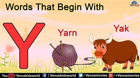 Words That Begin With 'y'