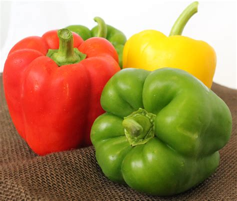 Bell Peppers Are In Season Pasta Recipe, Fun Facts