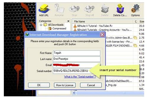 internet download manager registration serial number