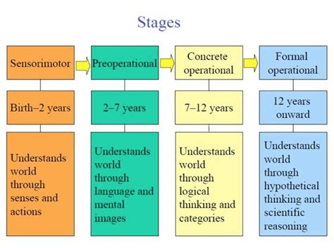 jean piaget piaget theory of cognitive development 537 | piaget's stages of learning1364803191890