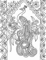 Peacock Coloring Portrait Colouring Peacocks Printable Adult Adults Advanced Pattern Simple Patterns Animals Detailed Printables Pretty Hard Nice Colored Bird sketch template