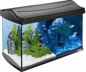 L Form Aquarium : tetra aquarium aquaart led discovery line 60 l anthrazit online kaufen otto ~ Sanjose-hotels-ca.com Haus und Dekorationen