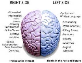 Right Brain Left Hemisphere Functions