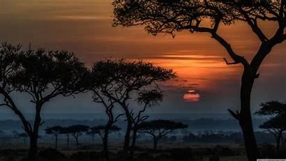 Africa Kenya Sunrise Mara Masai Uhd 4k